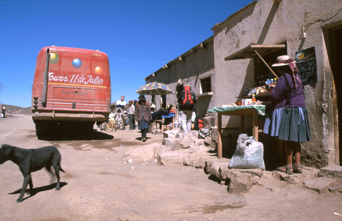 lama-glama-10-bolivia-2001