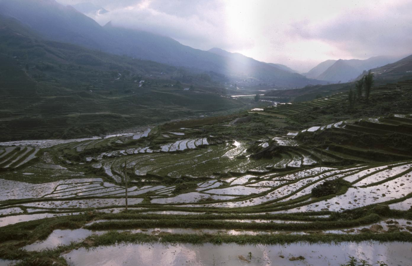 the-beautiful-rice-fields-around-sapa
