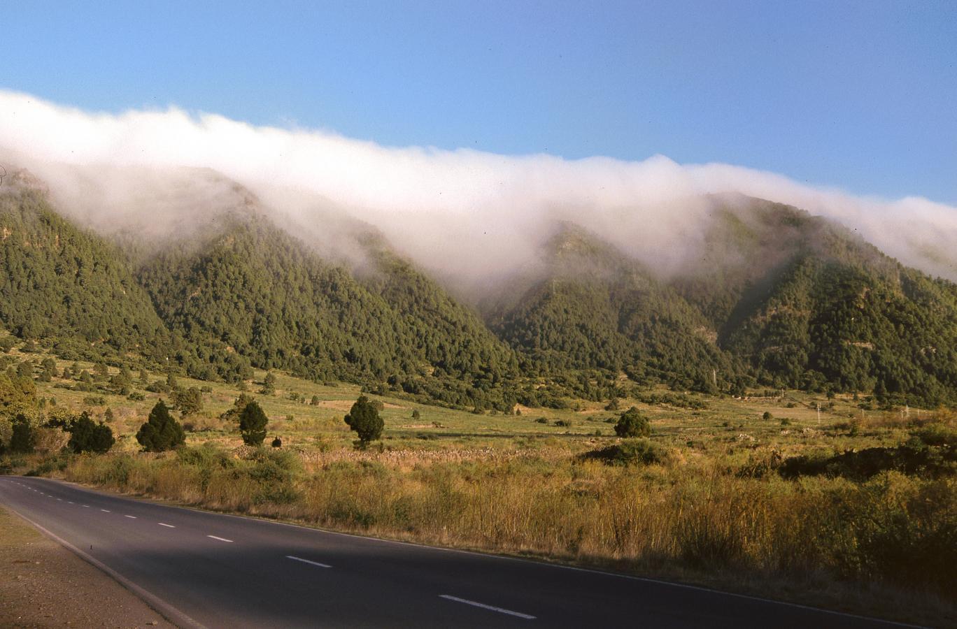 cascading-clouds-la-palma-2002