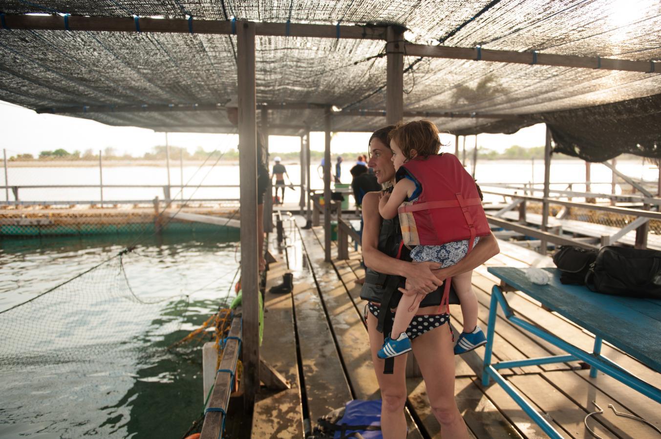the-dolphin-experience-near-sanur-bali-2013